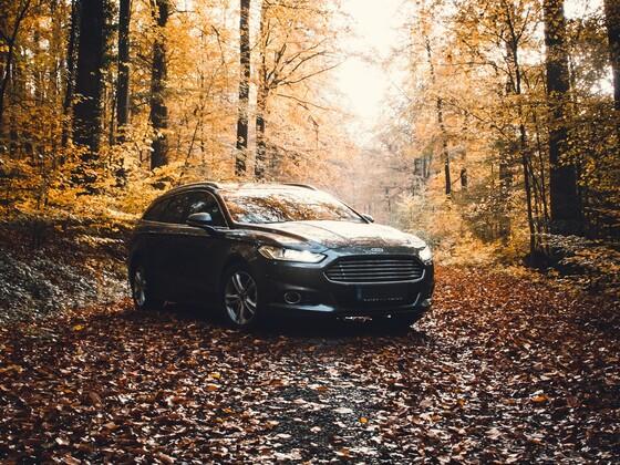 Der bunte Herbst 🍂 ist da....