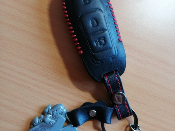 Schlüssel Hülle