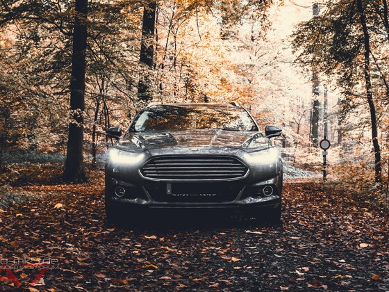 .....immer noch Herbst 🍂